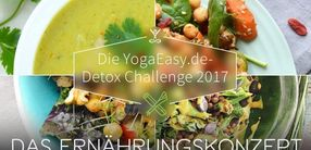 Detox Challenge 2017 Ernährungskonzept