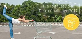 Detox Challenge 2017 Einkaufsliste Tag 1 bis 5