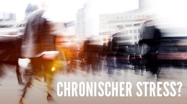 I370 208 header chronischer stress