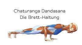 I270 150 header yoga anatomie 3d chaturanga dandasan neu
