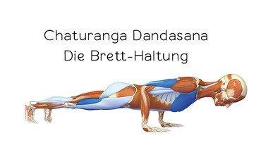 I370 208 header yoga anatomie 3d chaturanga dandasan neu