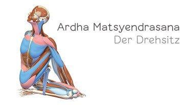 I370 208 header  yoga anatomie 3d der drehsitz