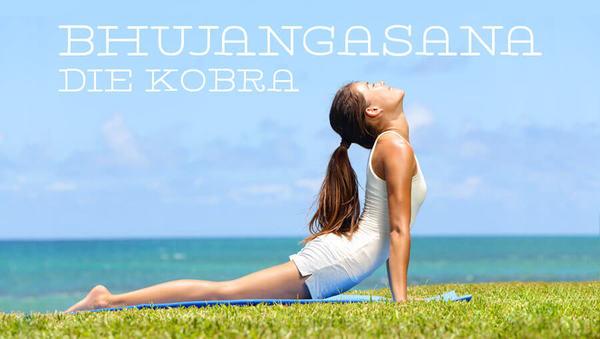 Asana des Monats: Bhujangasana – die Kobra