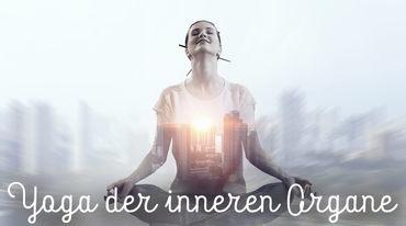I370 208 header yoga und innere organe