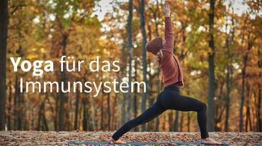 I370 208 yoga immunsystem gesundheit artikel 746477299