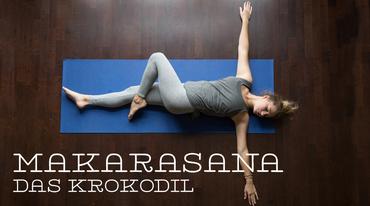 I370 208 yoga krokodil jathara parivartanasana ss 488817250