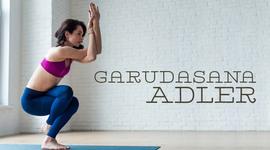 I270 150 yoga asana adler garudasana