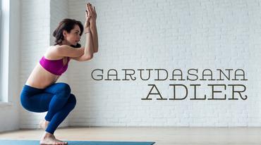 I370 208 yoga asana adler garudasana