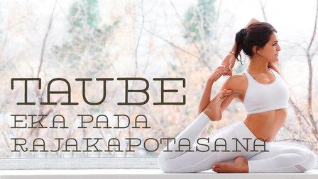 Medium yoga taube asana