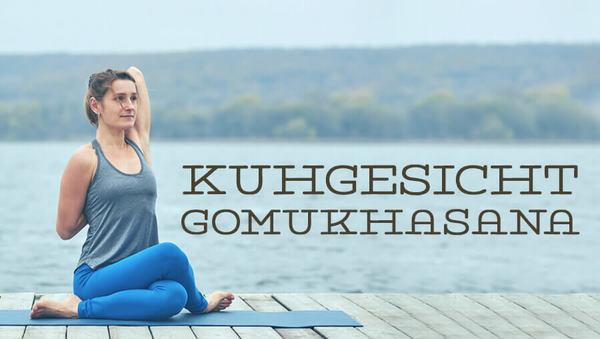 Gomukhasana Kuhgesicht Asana des Monats