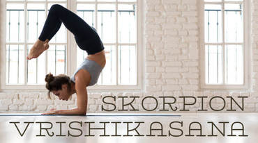 I370 208 yoga skorpion vrischikasana 1223884660