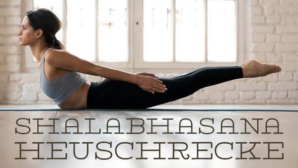heuschrecke shalabhasana salabhasana
