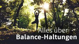 I270 150 balance yoga vrksasana artikel 1126492859