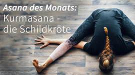 I270 150 yoga asana kurmasana artikel 1524440927
