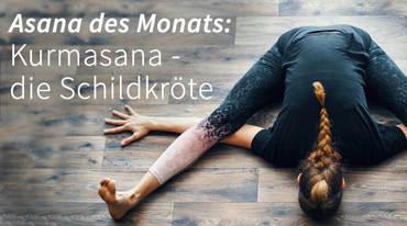 I370 208 yoga asana kurmasana artikel 1524440927