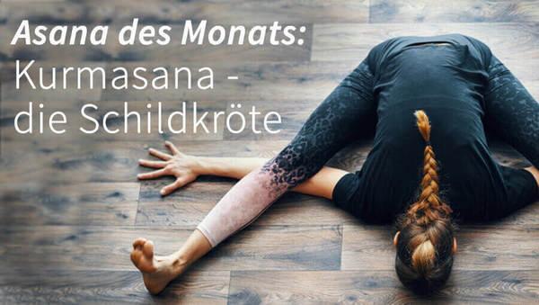 Asana des Monats: Kurmasana – die Schildkröte