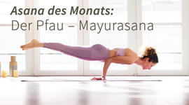 I270 150 mayurasana pfau asana yoga artikel 1694842771