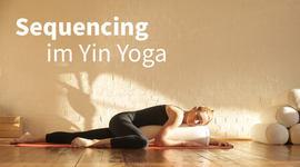 I270 150 sequencing yin yoga 1511960186 artikel