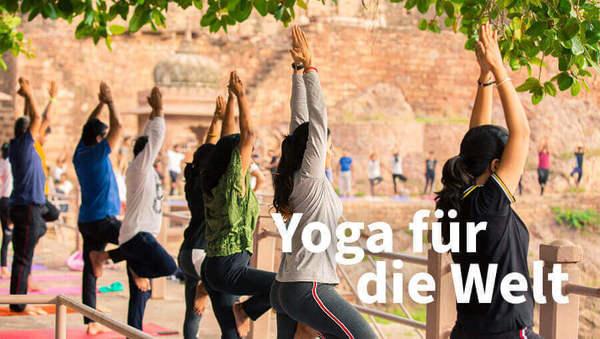 Der Weltyogatag: Warum die Welt Yoga braucht