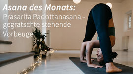 I270 150 prasarita padottanasana asana yoga 1203232176