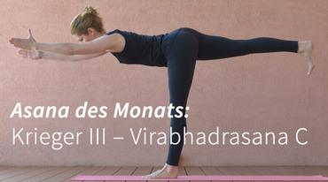 I370 208 virabhadrasana c krieger iii asana yoga artikel 4sl 1005