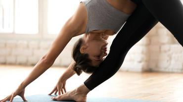 I370 208 hatha yoga lexikon artikel 1225059427