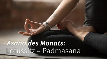 I370 208 lotussitz padmasana yoga 1033858492 header