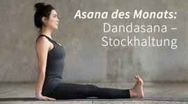 I270 150 asana dandasana stockhaltung header 1033265143