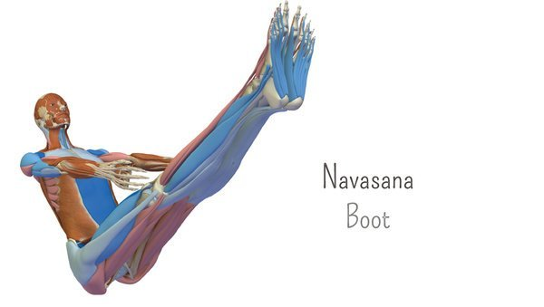 Large anatomie 3d boot