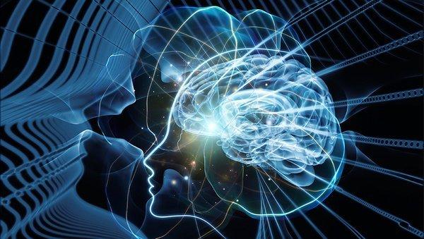 Interview: Meditation im Fokus der Neurobiologie