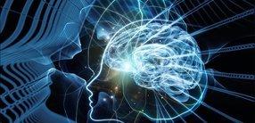 Meditation im Fokus der Neurobiologie. Endlich.