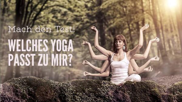 Der große Yogastil-Test für Yoga-Anfänger