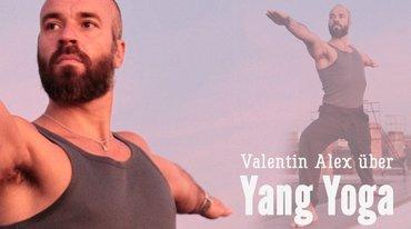 I370 208 valentin alex yang yoga