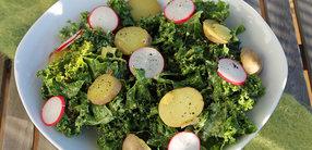 Rezept: Grünkohl-Kartoffel-Salat mit Radieschen