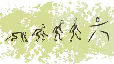I370 208 yogi evolution