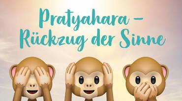 I370 208 pratyahara patanjali yoga