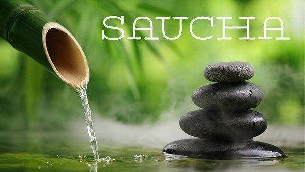 Saucha – Transformation zur Hygiene
