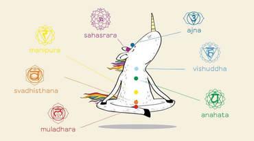 I370 208 header warum die 7 chakras eine westliche erfindung sind