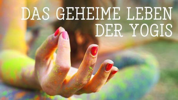 Das geheime Leben der Yogis
