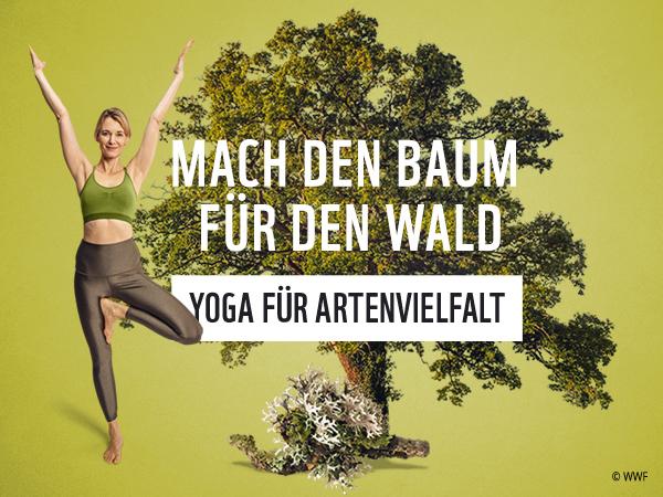 WWF Yoga für Artenvielfalt