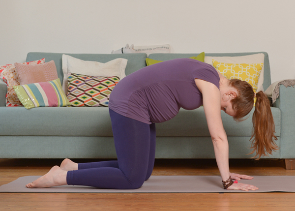 Yoga für Schwangere Katze Kuh Asana