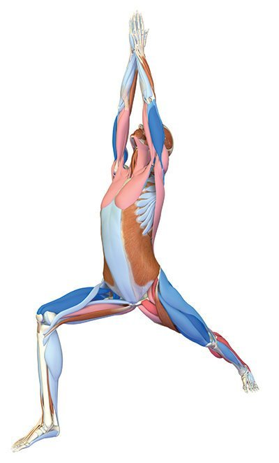 Yoga-Asana Krieger I