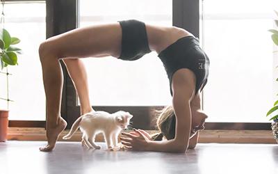 Yoga Chakrasana