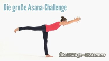 Yoga-Programm Die große Asana-Challenge