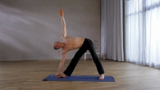 ashtanga yoga f r fortgeschrittene mit dr ronald steiner. Black Bedroom Furniture Sets. Home Design Ideas