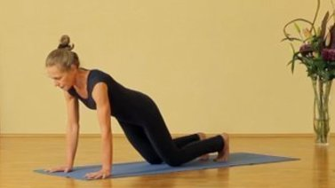 Yoga Video Sonnengruß für Anfänger