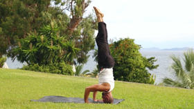 Yoga Video Espresso 3: Twists & Turns