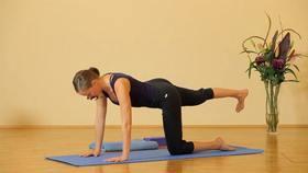 Yoga Video Einsteiger-Stunde für jeden