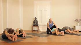 Ashtanga Yoga Videos - Practice with Dr. Ronald Steiner ...