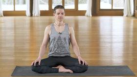 Yoga Video Magic Six: Eine Aufwärmsequenz aus dem Jivamukti Yoga
